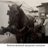 museum_kropotkin1970_118227969_828397614358578_7510842909298202998_n